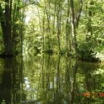lubniewice-2005-81