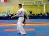 Karate MP 306