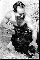 oyama-bull
