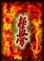 Obraz może zawierać: ogień